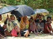 Myanmar, Bangladesh begin talks to repatriate Rohingya people