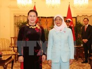 National Assembly Chairwoman meets Singaporean President