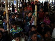 Myanmar, Bangladesh to cooperate with UNHCR on Rohingya return