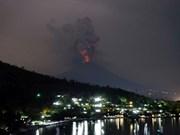 24 Vietnamese stranded on Indonesia's Bali