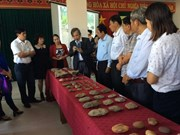 Traces of ancient Vietnamese found in archaeological relic in Gia Lai