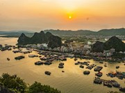Vietnam to grant e-visas to citizens of six more nations