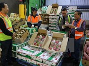 Fruits, vegetables export reach 3.16 billion USD in 11 months
