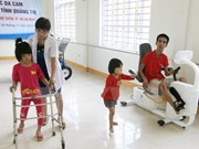 Hanoi meeting marks Int'l Day of Persons with Disabilities