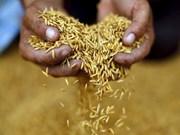 Thai Rice Festival 2017 to be held in Bangkok