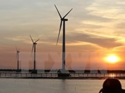 Foreign investors interested in Vietnam's wind power projects
