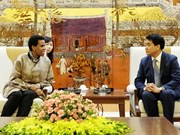 Hanoi leader hails South African ambassador's contribution