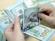 Remittances to hit 5.2 billion USD this year