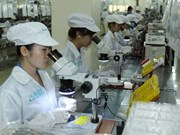 Japanese firms talk VN business obstacles