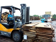 Timber exports to EU may hit 1 billion USD