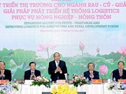 PM urges better logistics for fruit, vegetable exports