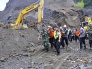 Indonesia: Landslide kills eight sand miners