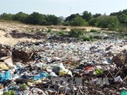 Untreated waste pollutes environment in Vinh Phuc