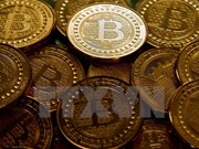 Experts warn Vietnamese investors of bitcoin bubble
