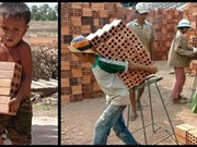 Heavy penalties imposed on people hiring child labour