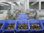 VASEP forecast upbeat shrimp export growth for 2018