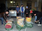 Firecracker smugglers feel heat as Tet nears