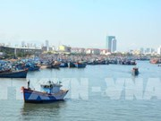 Thanh Hoa works to combat IUU fishing