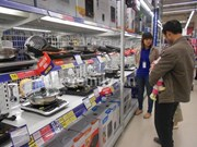 Household appliance industry worth 13 billion USD