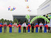 Vietnam's first smart fertilizer factory opened in Tra Vinh