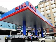 PV Oil stakes entice eight foreign investors