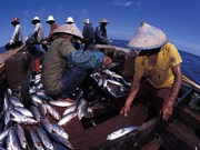 Indonesia to increase investment in maritime, aquatic sectors