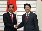 Japan, Indonesia reinforce strategic partnership