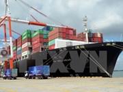 Thi Vai international port begins operation