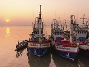 Thai government urgently tackling IUU fishing