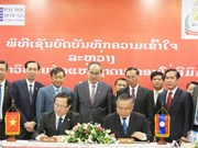 Vietnamese, Lao national universities foster exchanges