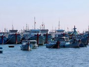 Minister asks for more coordination to curb illegal overseas fishing