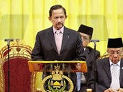 Bruneian Sultan appoints new military commander