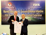 FIFA pledges support for Vietnam's football development