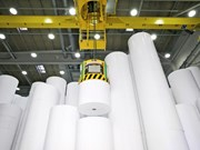 Vietnam's paper imports up last year
