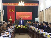 Hanoi enhances preservation of Co Loa relic site