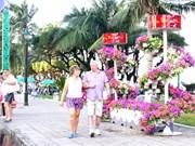 Foreign tourists flock to Nha Trang to celebrate Tet