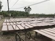Rice paper village keeps ancient craft alive