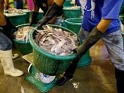 Thai gov't ramps up crusade against illegal fishing, human trafficking