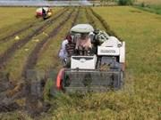 Winter-Spring crops start nationwide