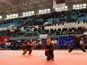 Vietnamese martial arts league makes debut in Algeria