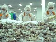 Australian delegation examines shrimp processing chain in Vietnam