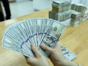 Reference exchange rate continues to rise