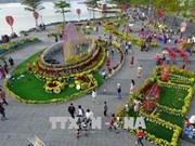Da Nang City hosts slew of festive events