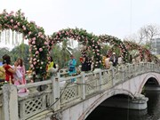 Hanoi to host second Bulgarian rose festival