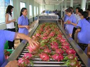Fruit, vegetable exports continue growth trend in two months