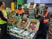 ASEAN - RoK's second biggest farm produce export market
