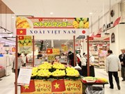 Vietnamese fruits popular in Japan