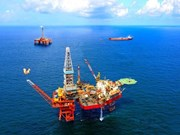 Government focuses on divestment in oil and gas sector