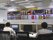Vietnamese shares rise slightly on both bourses