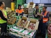 Vietnam, Australia forge cooperation in economy, trade, investment
